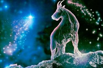 Общий гороскоп на завтра для Козерога