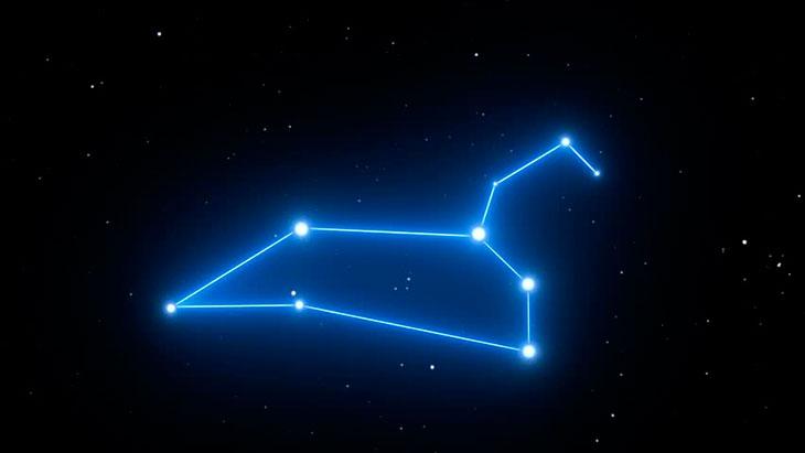 Где находится созвездие Льва?