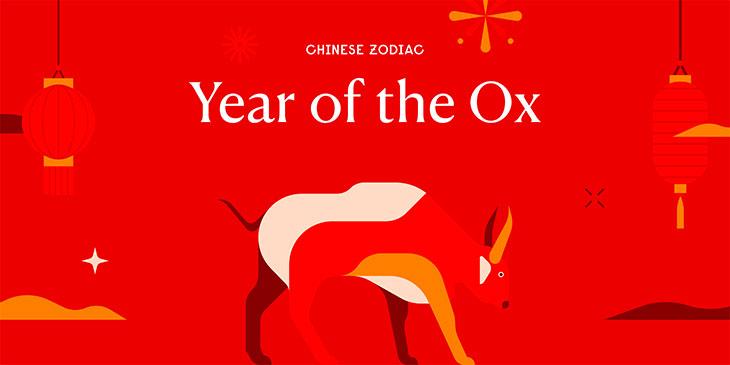 year of the bull horoscope