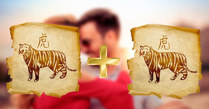 Мужчина Тигр и женщина Тигр в любви