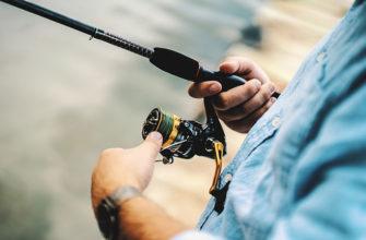 В соннике ловить рыбу